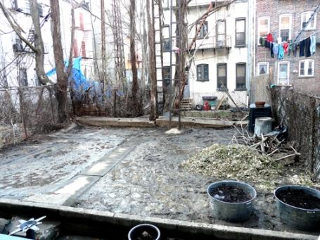 garden_february